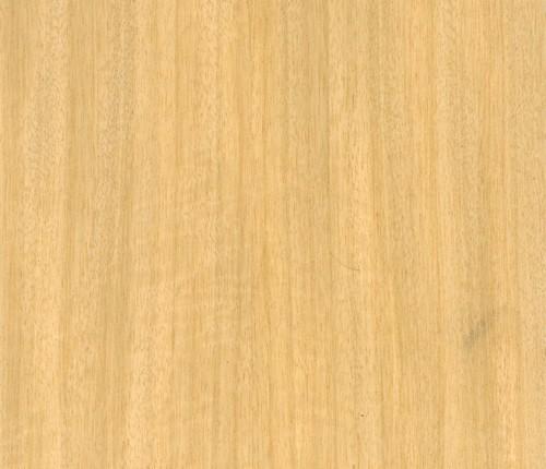 Tipos de Contraplacado Bétula Folheada
